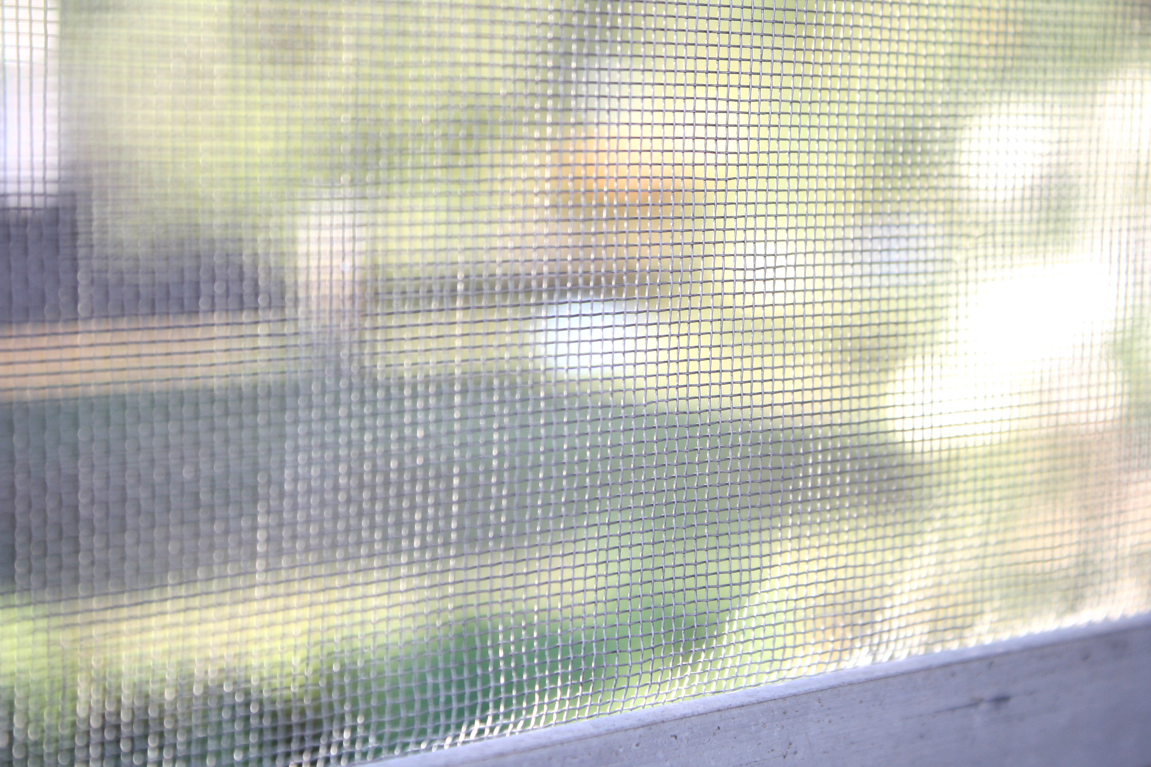 window screen Throw Open the Windows   Summertime is Almost Here!