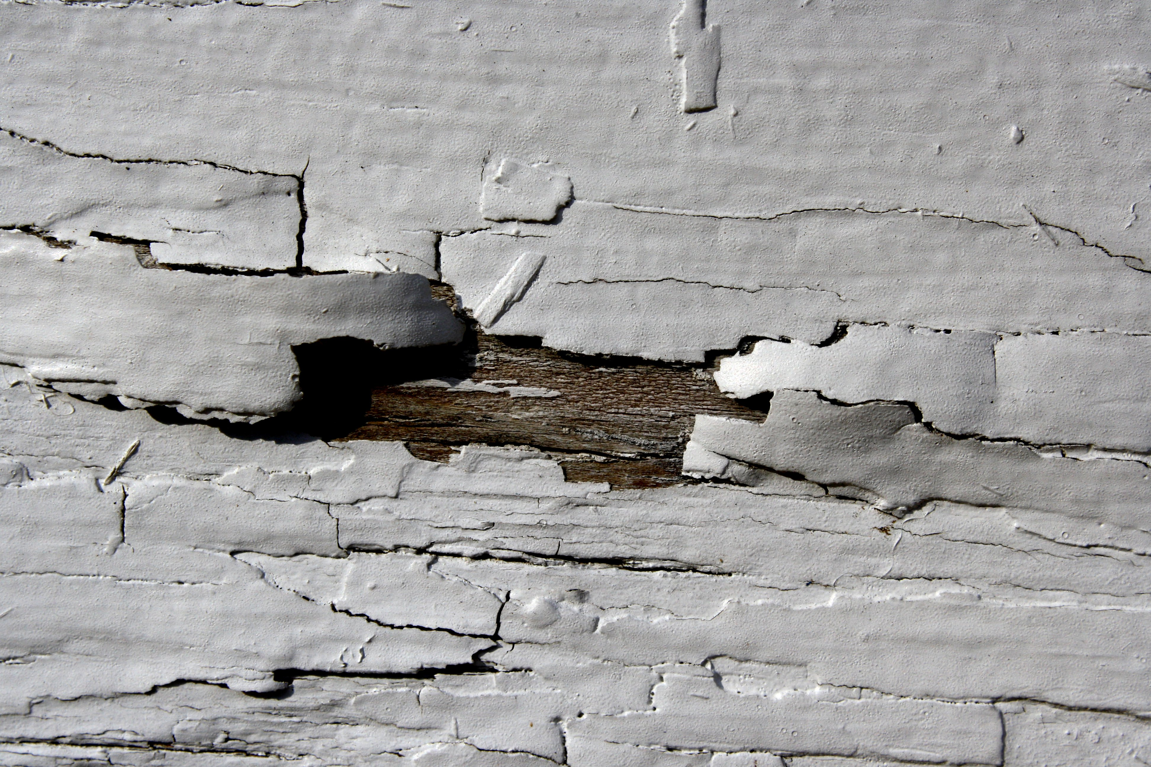 White Peeling Paint Texture Picture Free Photograph Photos
