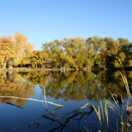 Autumn at the Lake - Free High Resolution Photo
