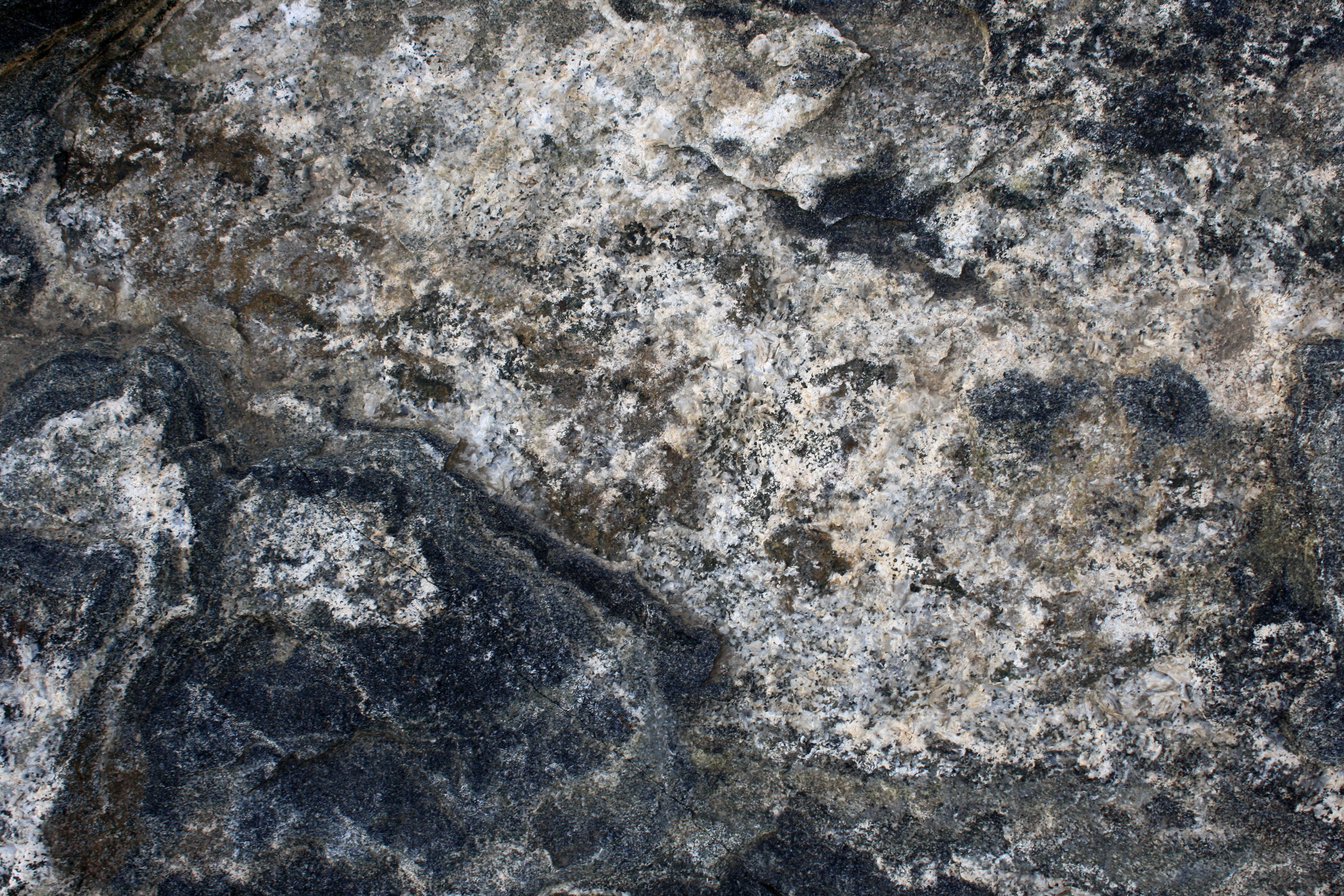 White Metamorphic Rock : Black and white metamorphic rock texture picture free