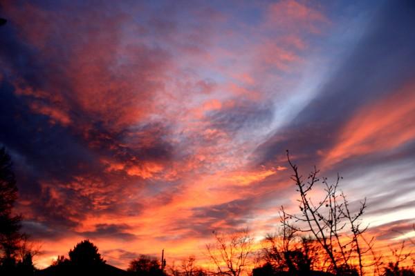 Brilliant Sunrise over Houses - Free High Resolution Photo
