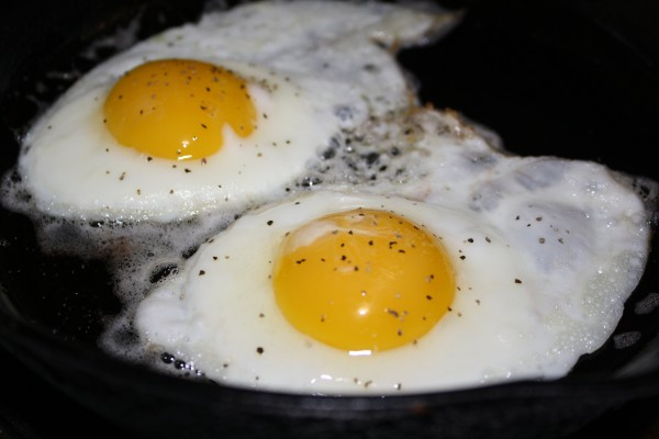 Fried Eggs - Free High Resolution Photo