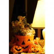 halloween-treat-bags-full-of-candy-for-trick-or-treaters-thumbnail