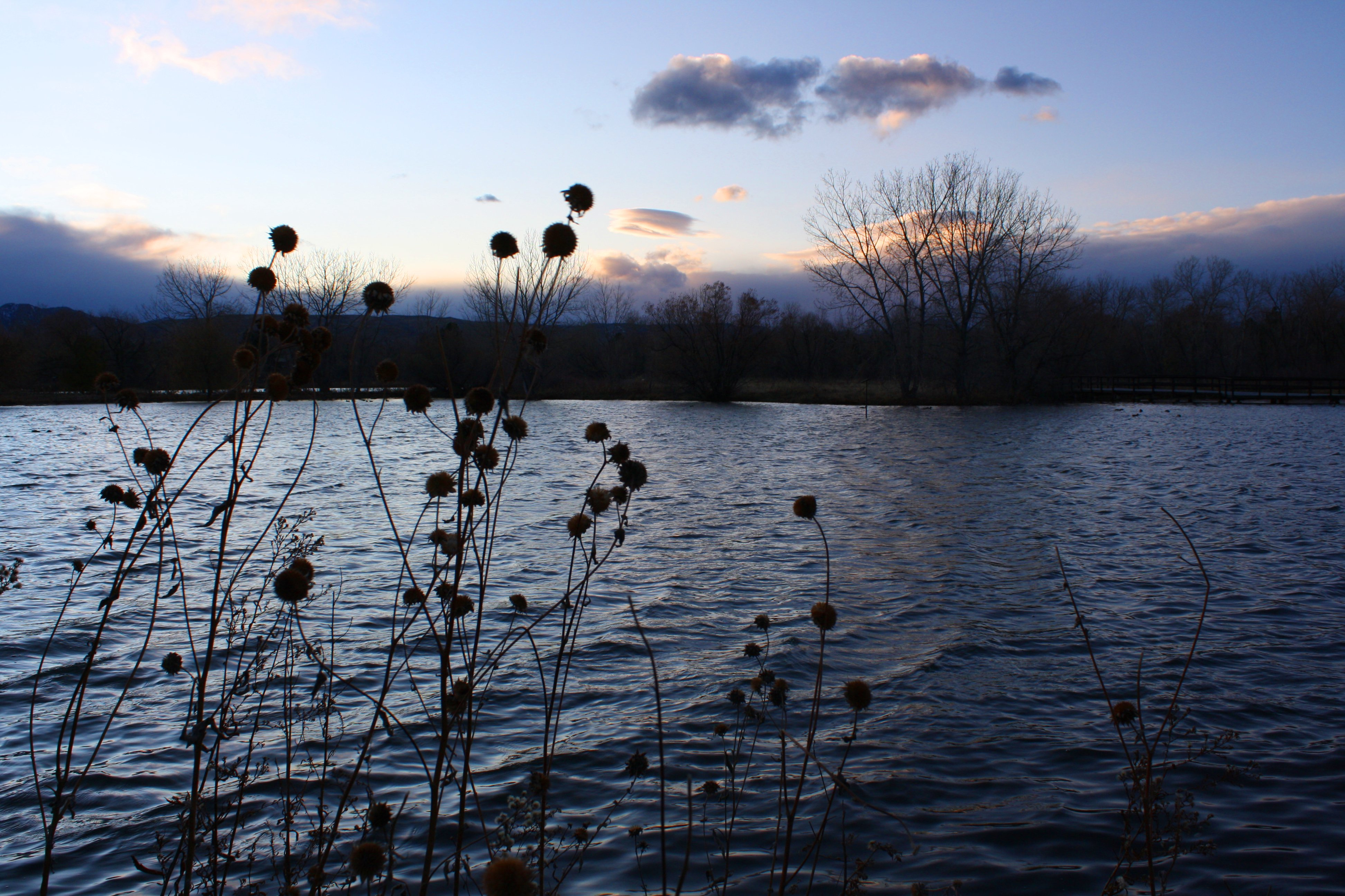 Lake At Dusk In November Picture Free Photograph