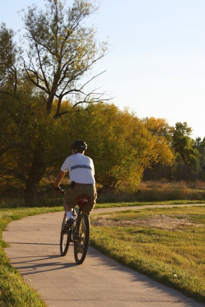 Man Riding Bike On Path Picture Free Photograph Photos