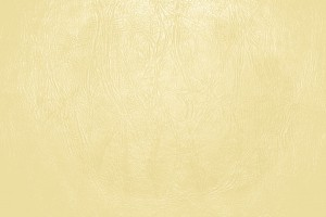 Butterscotch Yellow Leather Close Up Texture - Free High Resolution Photo