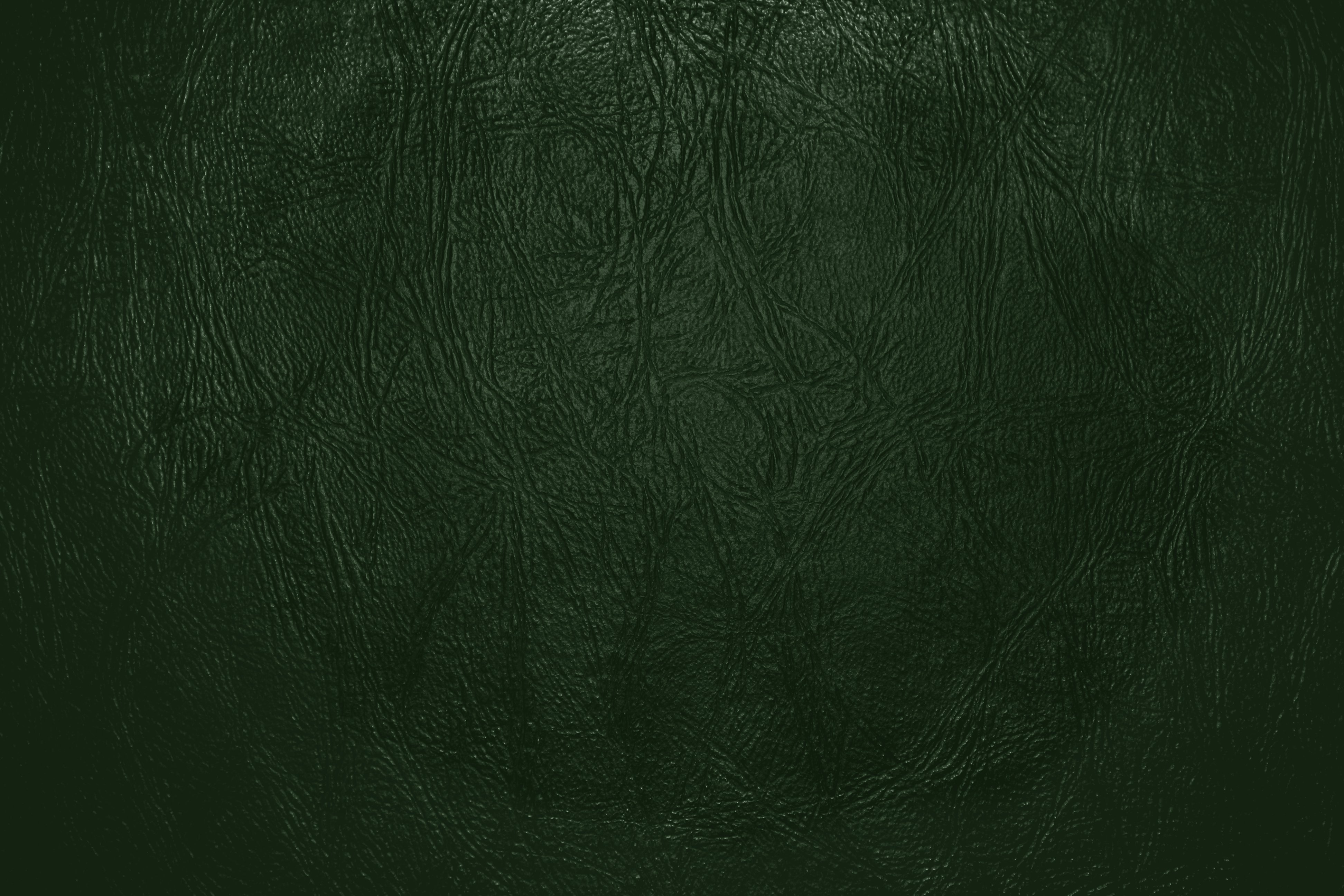 Forest Green Leather Close Up Texture Picture Free