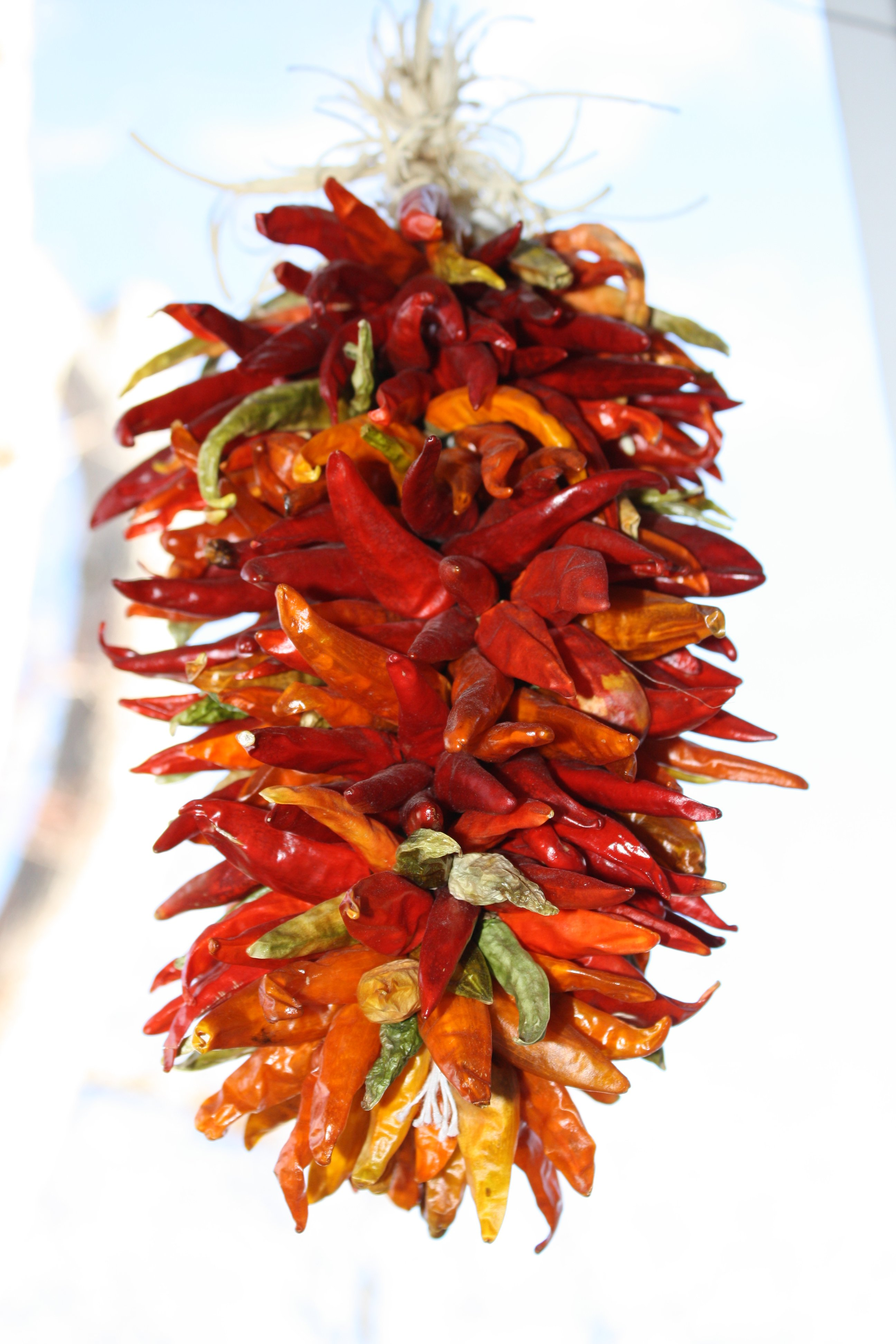 Hanging Chili Peppers Ristra Decoration Picture Free