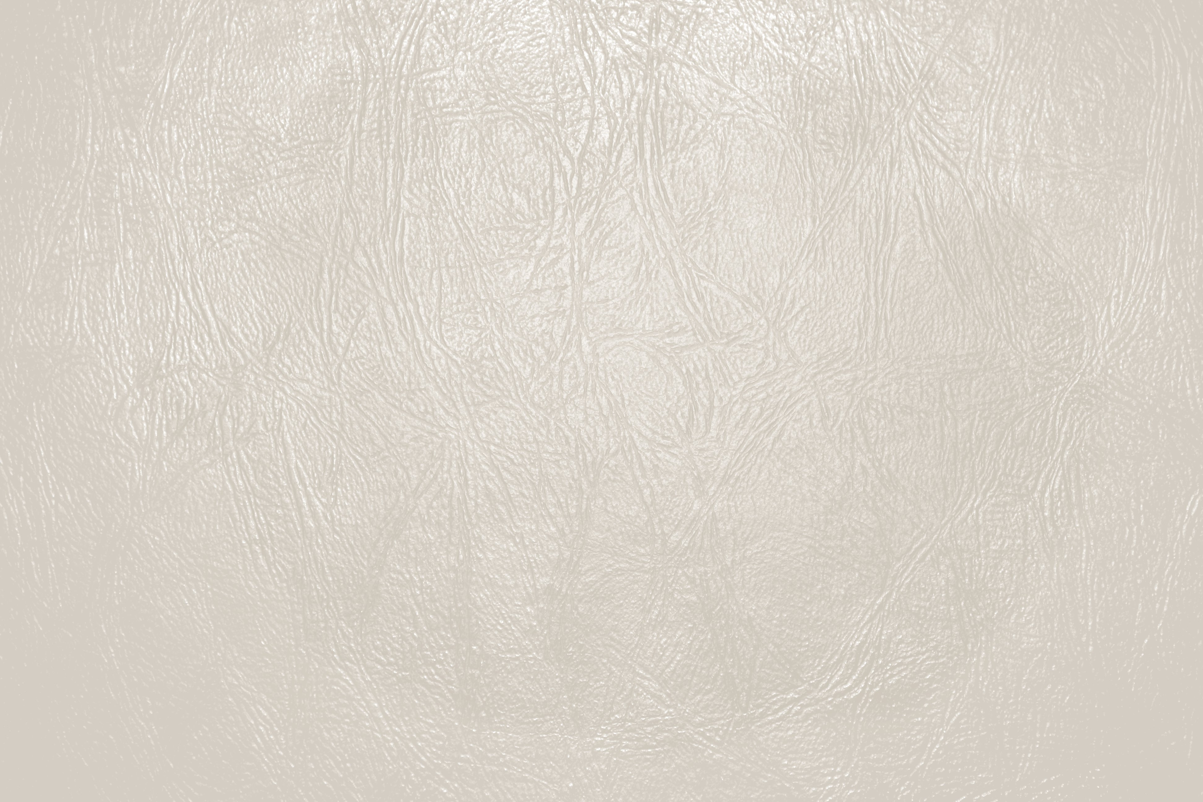 Ivory Colored Leather Close Up Texture Picture Free