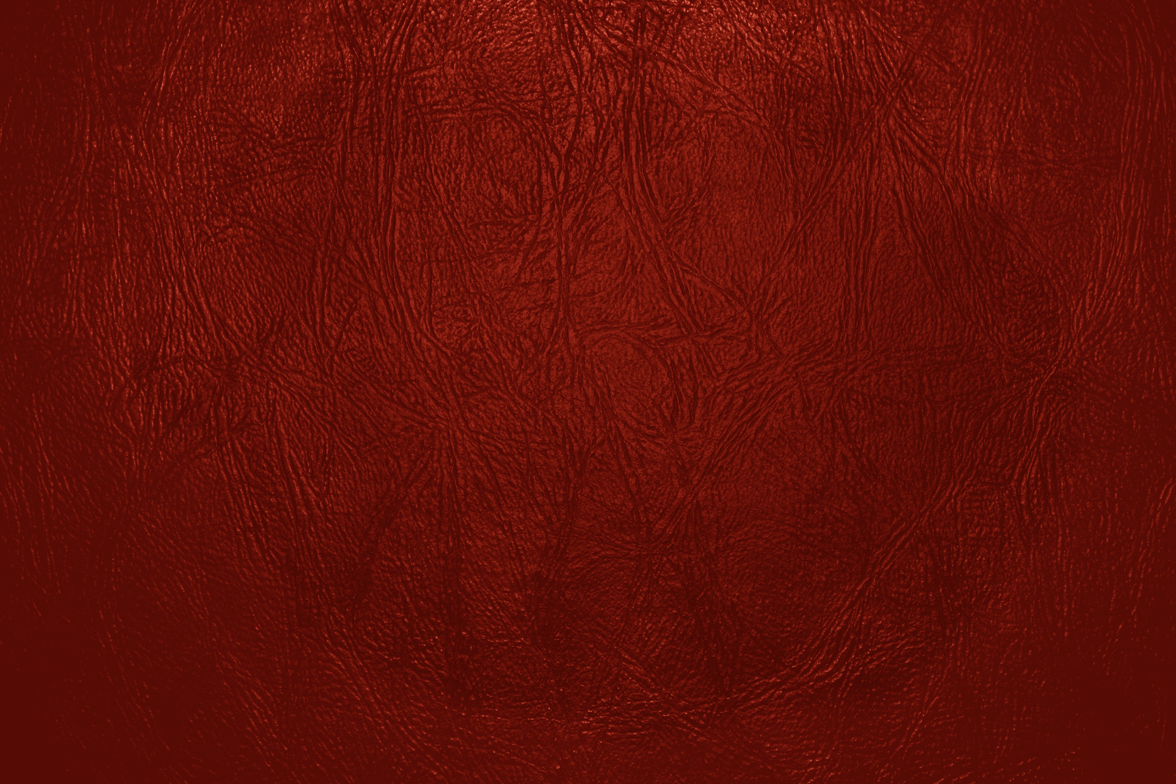 Old Spice Logo 2012 Red Leather Close Up T...