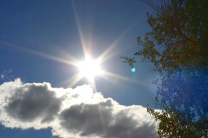 Sun in Blue Sky with Cloud and Tree - Free High Resolution Photo