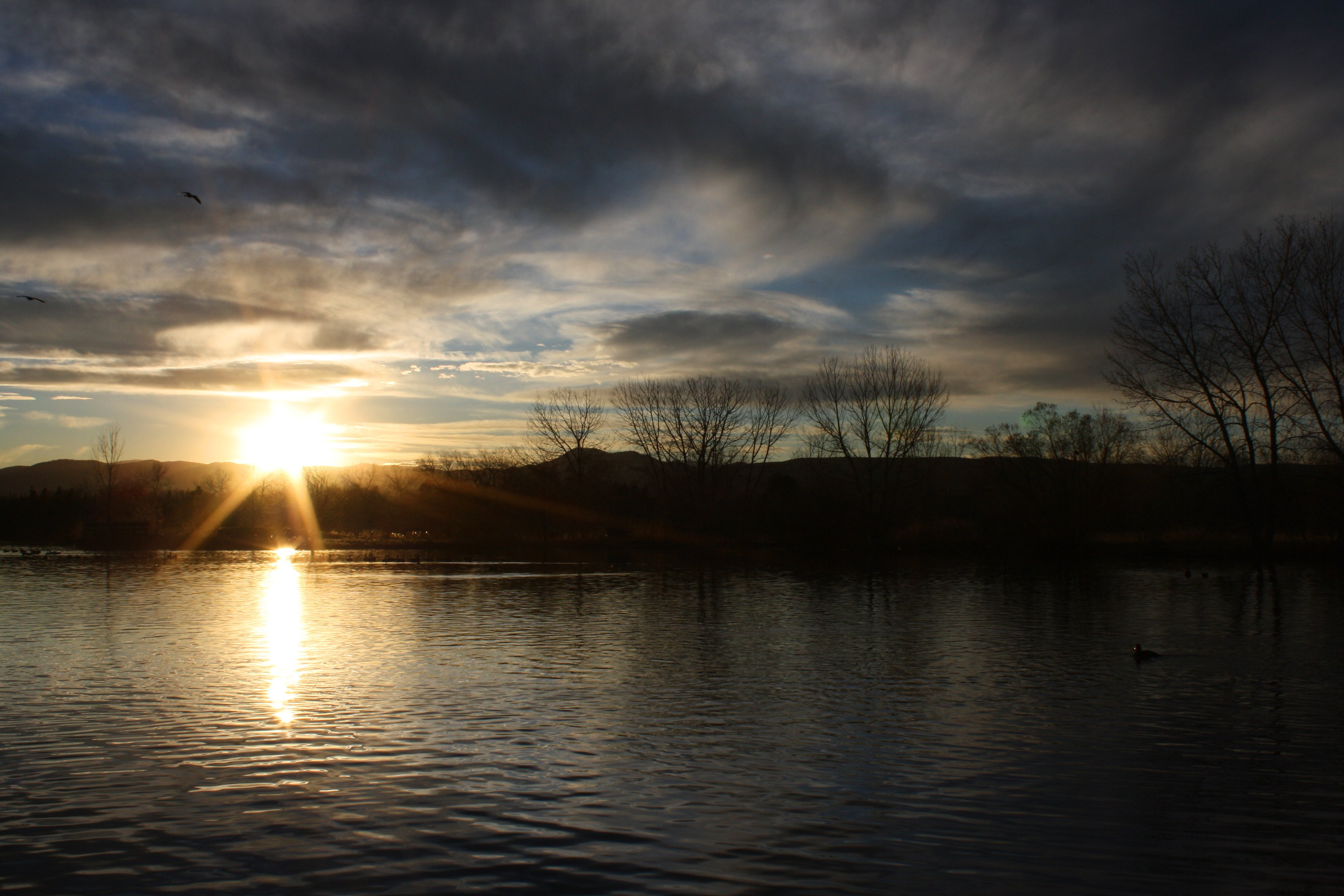 Sun Setting Over Lake Picture Free Photograph Photos
