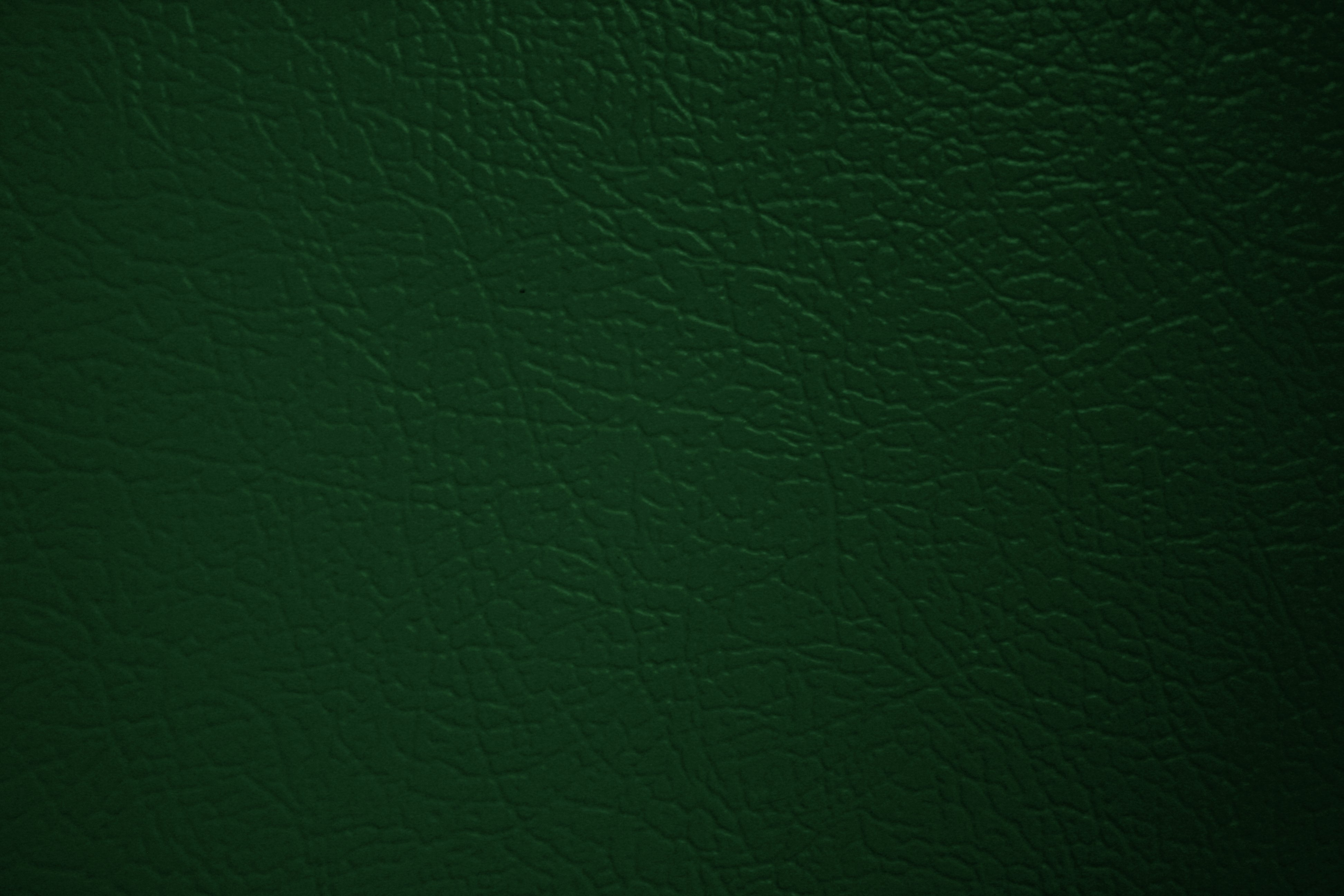 Green Faux Leather Texture  Photos Public Domain. Enesco Kitchen Fairies. Hanging Herb Garden Kitchen. Kitchen Craft Cookware Complaints. Kitchen Colors For Oak Cabinets. Discount Kitchen Faucets Pull Out Sprayer. Forhoja Kitchen Cart. House Plans With Outdoor Kitchen. Kitchen With Maple Cabinets