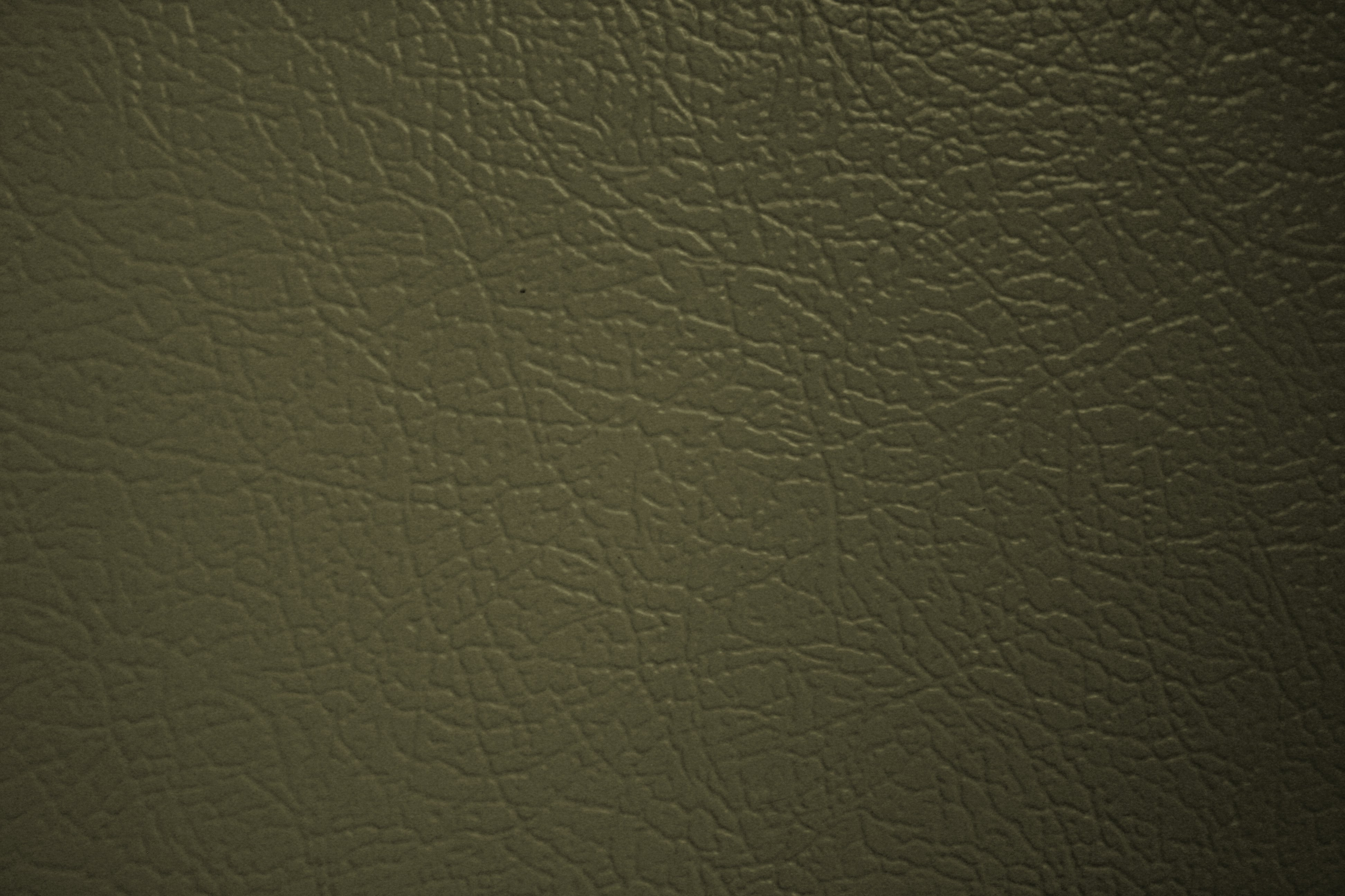 Olive Green Faux Leather Texture Picture Free Photograph