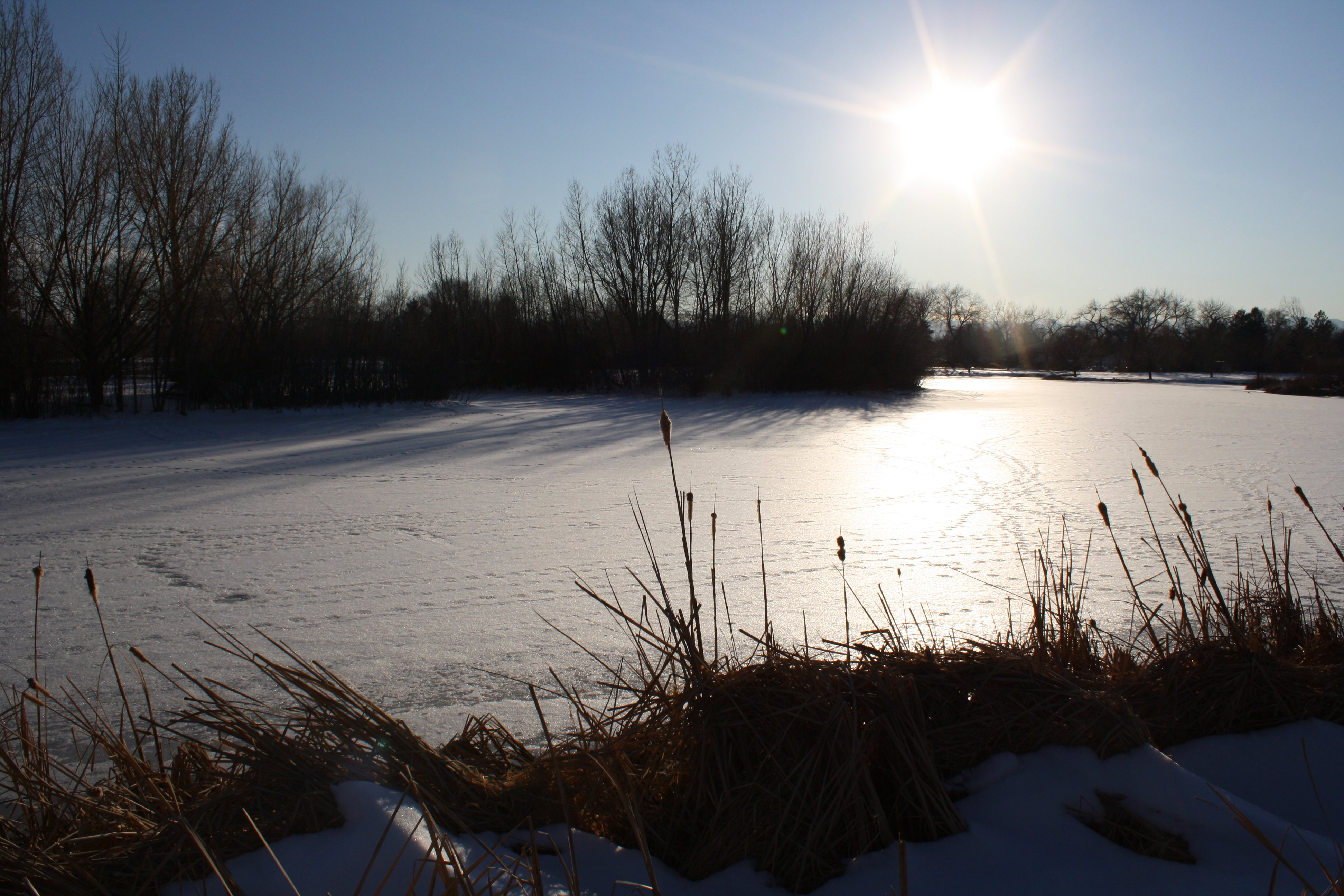 Bright Sun Over Frozen Pond Picture Free Photograph