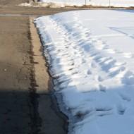 Sidewalk Not Shoveled - Free High Resolution Photo