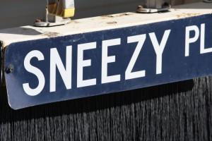 Sneezy Place Funny Street Sign - Free High Resolution Photo