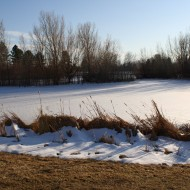 Snow Covering Frozen Lake in Winter - Free High Resolution Photo