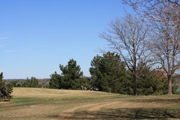 Dirt Road or Trail through Park - Free high resolution photo