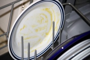 Dirty Plate Scraped but not Rinsed - Free High Resolution Photo
