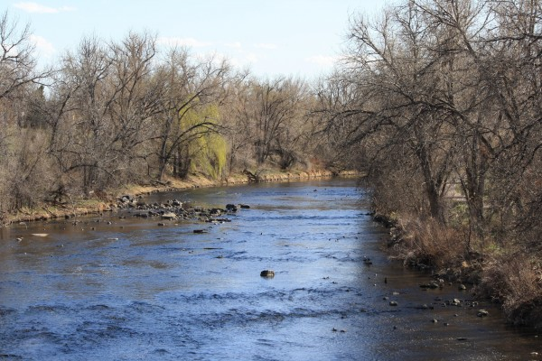 River in Early Spring - Free High Resolution Photo