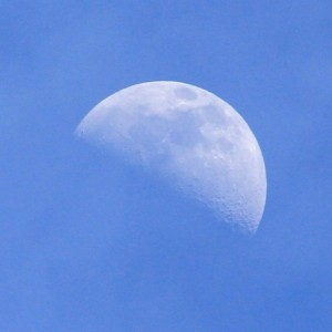 Daytime Moon - Free photo
