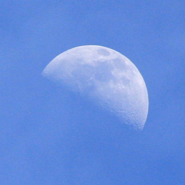 Daytime Moon - Free photo