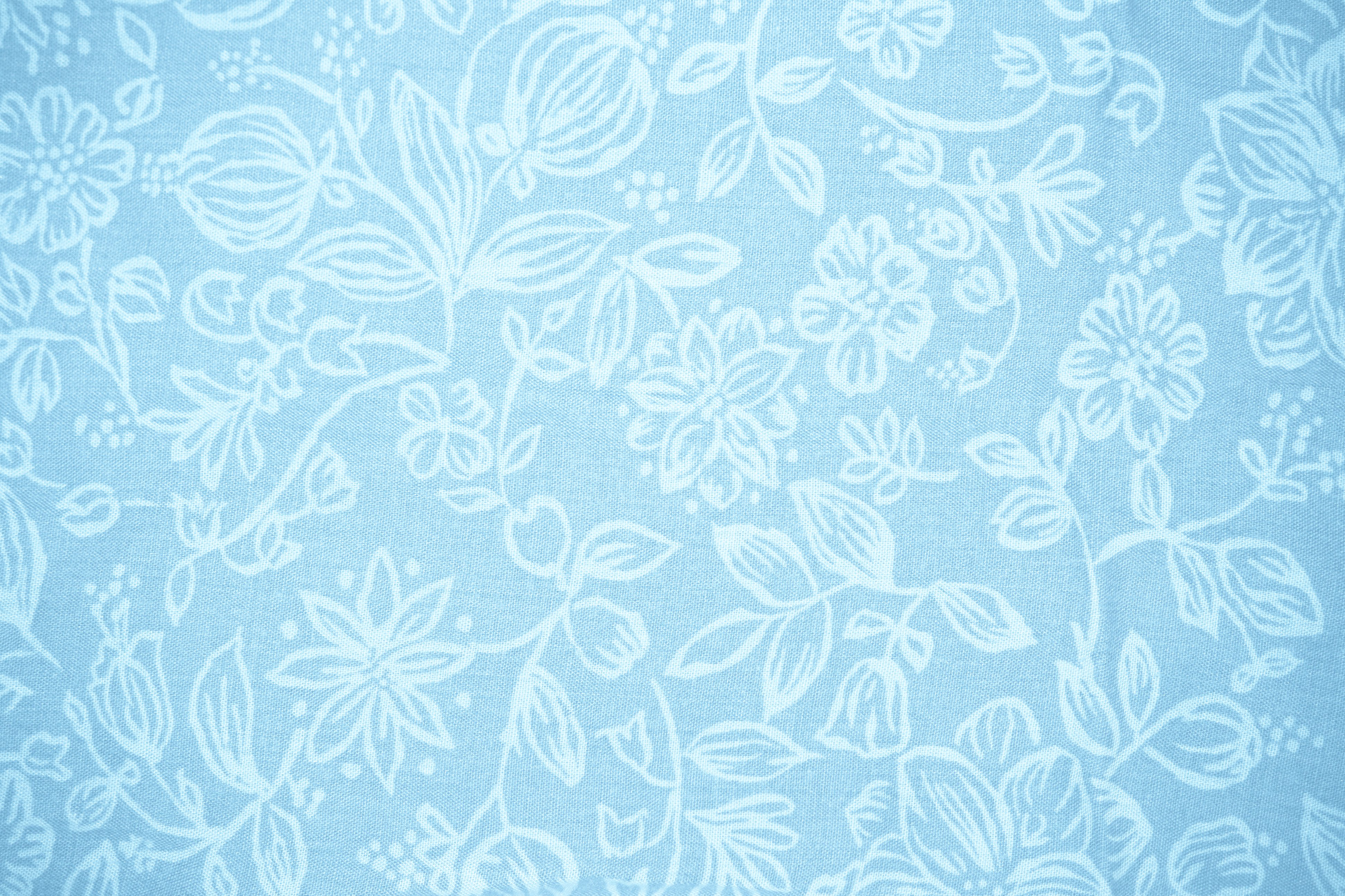Baby Blue Fabric with Floral Pattern Texture - Free High Resolution ...