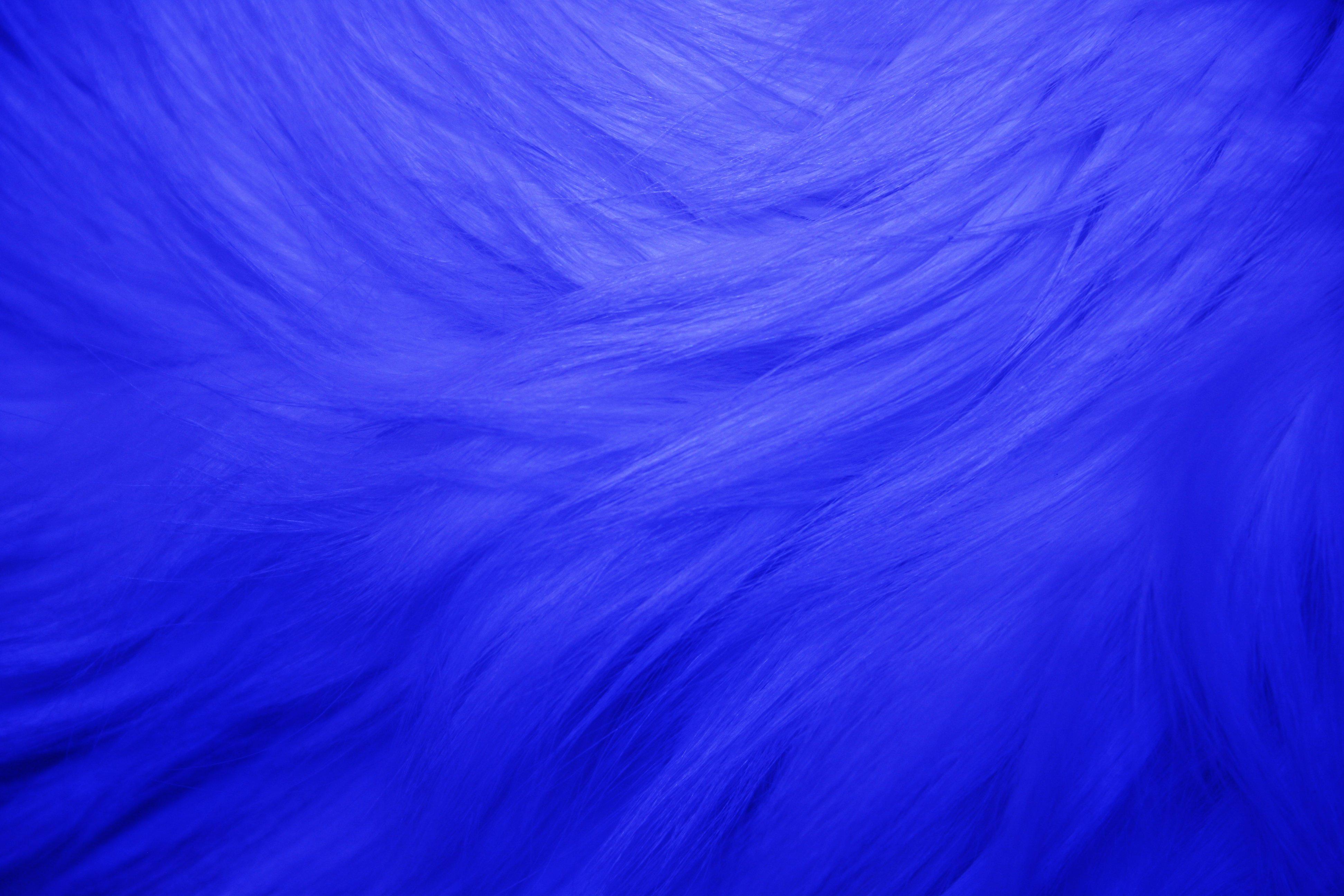 Blue Fur Texture Picture   Free Photograph   Photos Public Domain