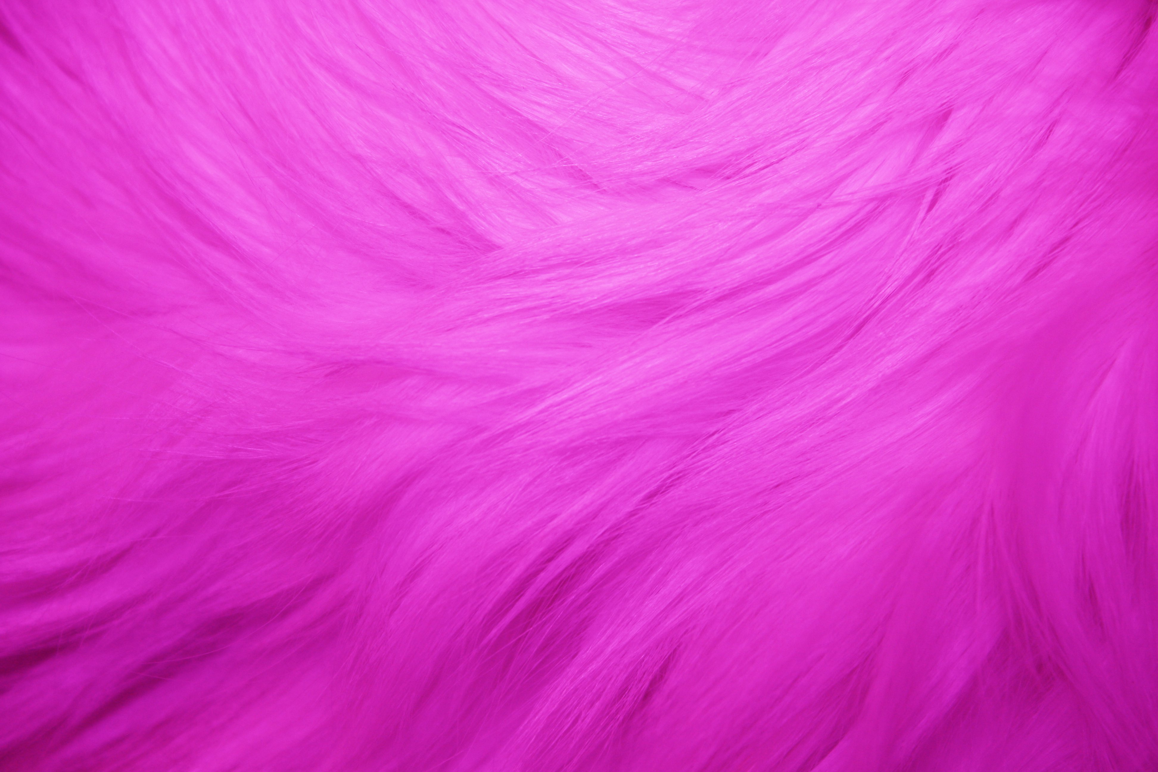 hot pink fur texture picture free photograph photos