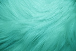 Teal Fur Texture - Free High Resolution Photo