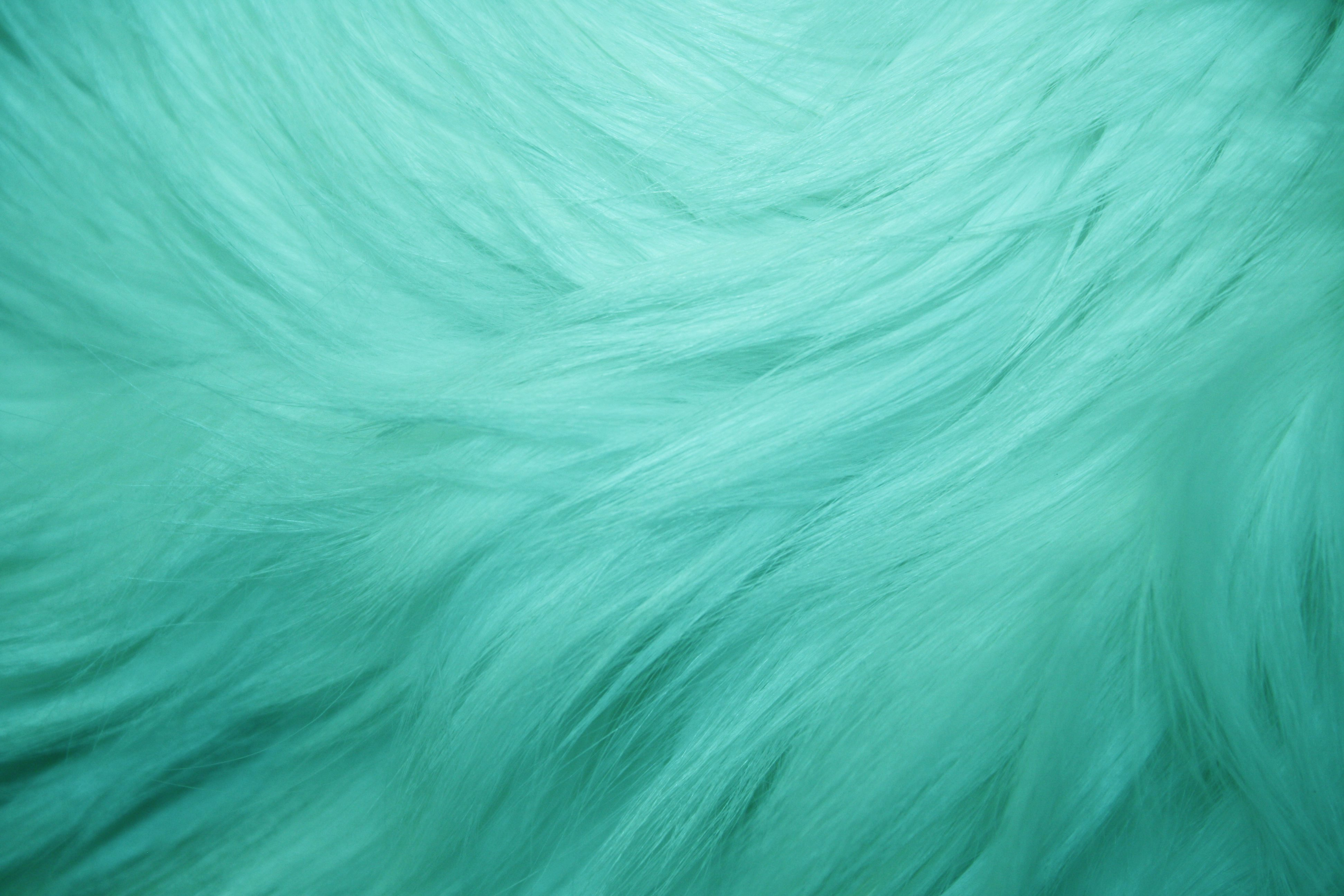 Teal Fur Texture Picture Free Photograph Photos Public
