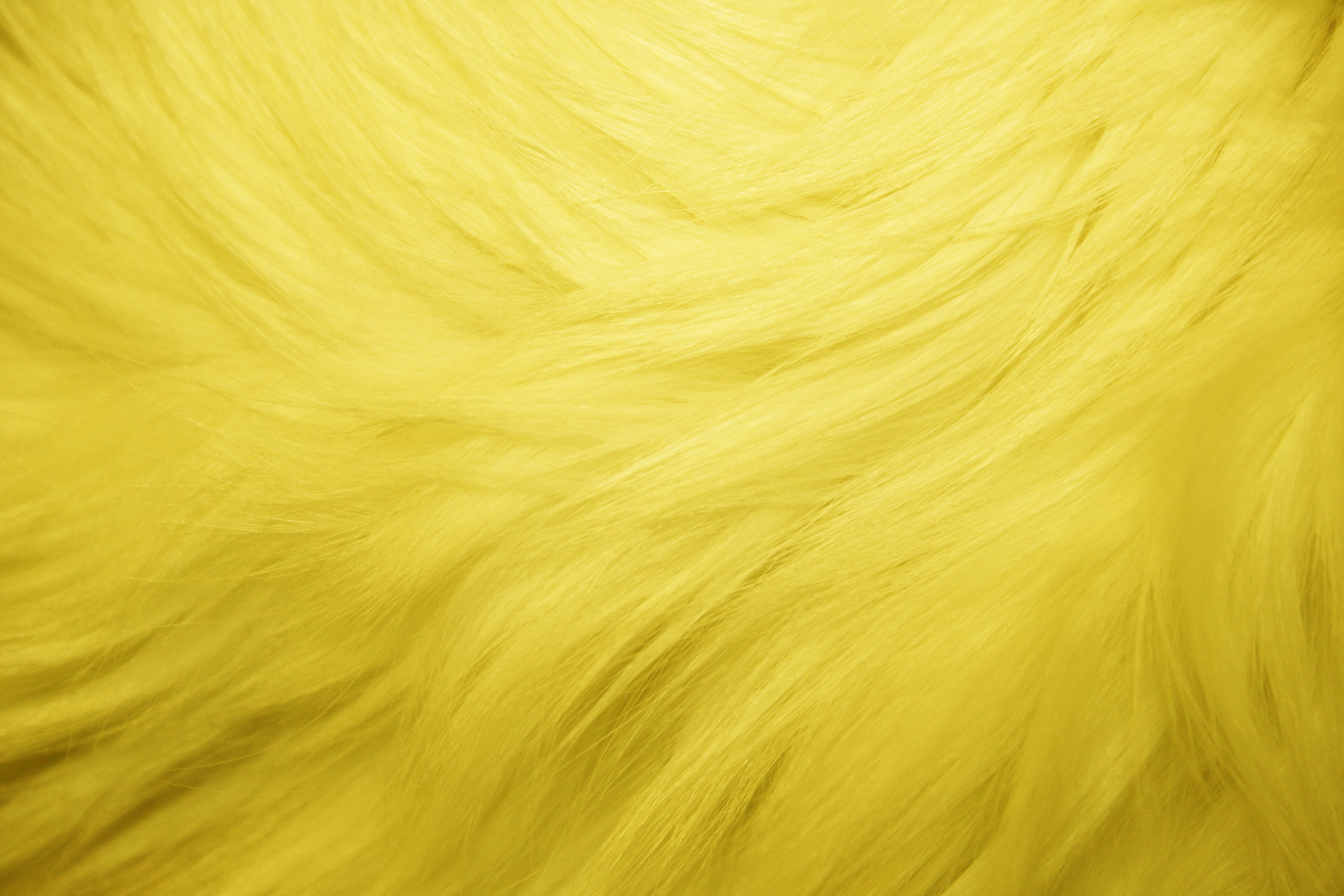 Yellow Fur Texture - Free High Resolution Photo - Dimensions  3888    Yellow Wallpaper Texture
