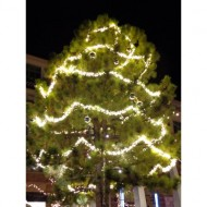 outdoor-christmas-tree-with-lighted-garlands-thumbnail