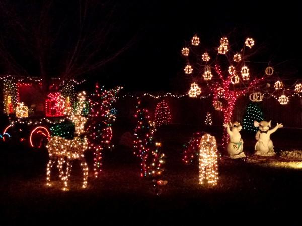 Holiday Lights Christmas Yard Decorations - Free High Resolution Photo