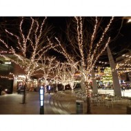 outdoor-plaza-nightime-scene-with-skating-rink-and-christmas-lights-thumbnail