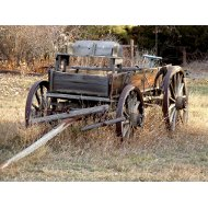 buckboard-wagon-thumbnail