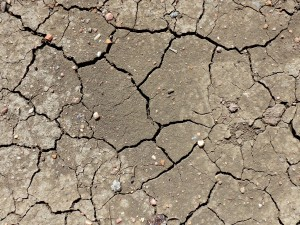 Dried Mud Cracks Texture - Free High Resolution Photo