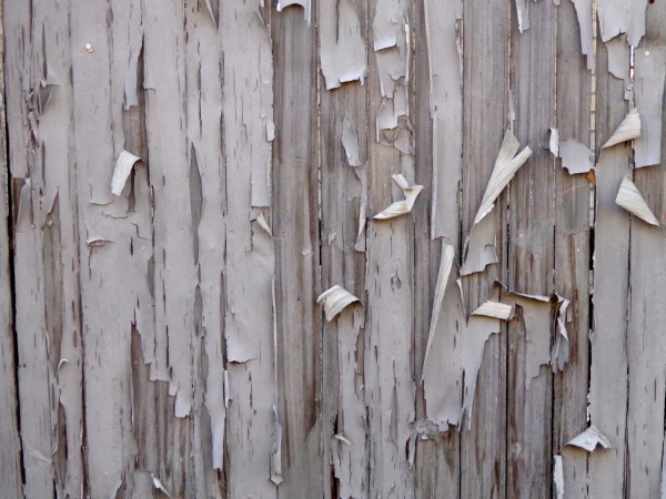 Peeling Paint on Fence Boards Texture - Free High Resolution Photo
