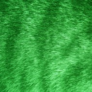Green Tabby Fur Texture - Free High Resolution Photo