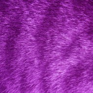Purple Tabby Fur Texture - Free High Resolution Photo