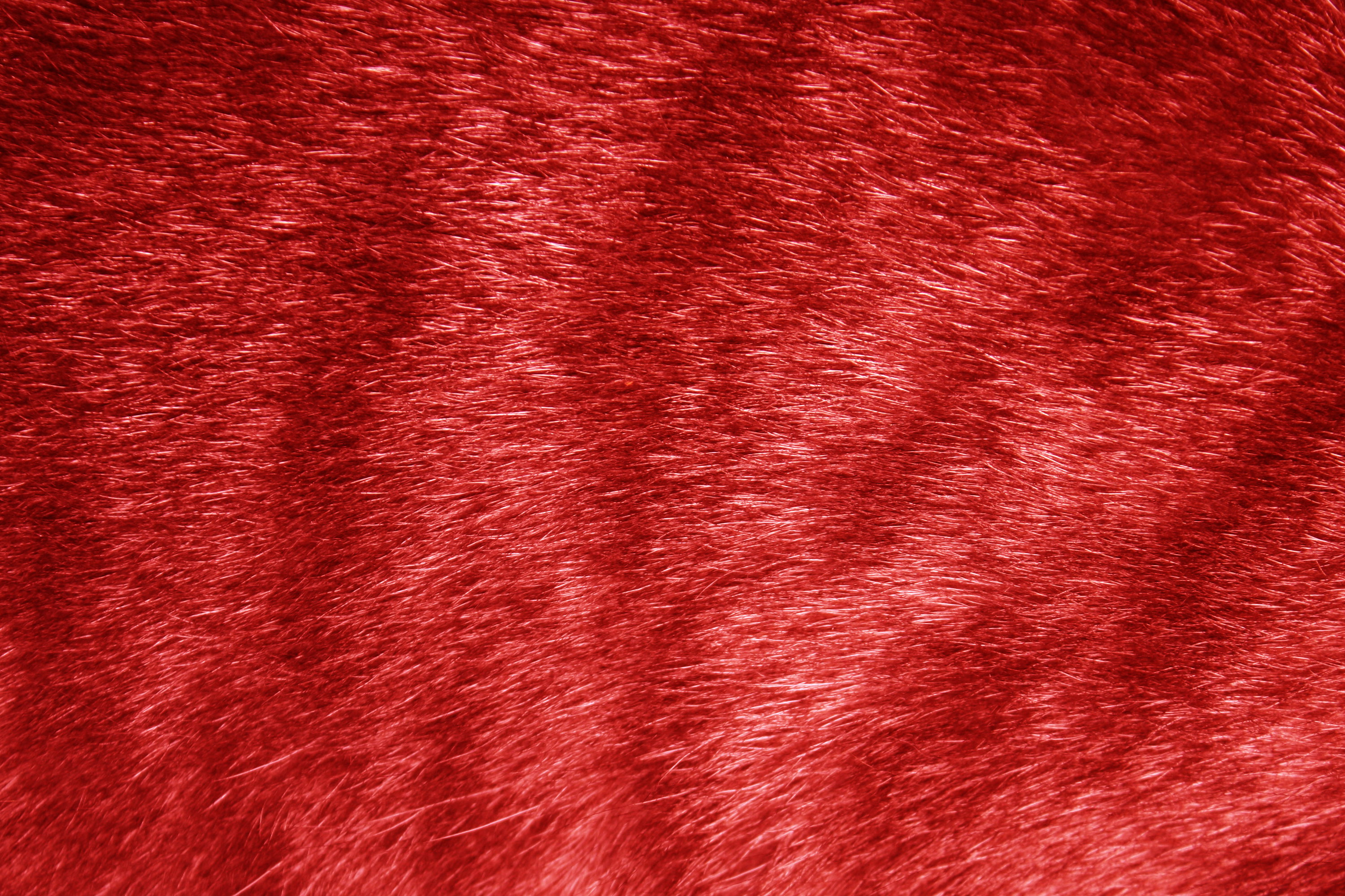 Red Tabby Fur Texture Picture Free Photograph Photos