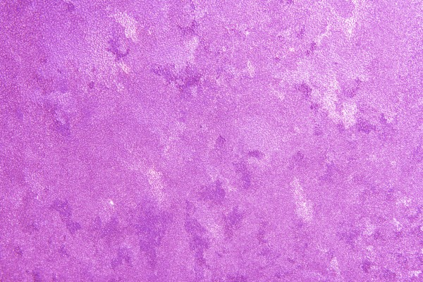 Frost on Glass Close Up Texture Colorized Purple - Free High Resolution Photo