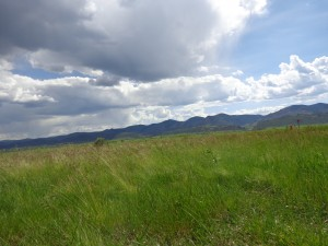 Green Meadow with Mountains in Background - Free High Resolution Photo