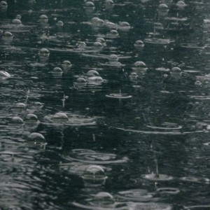 Raindrops, Bubbles and Ripples on the Water - Free High Resolution Photo