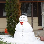 snowman - Free High Resolution Photo