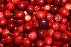 Cranberries - Free High Resolution Photo