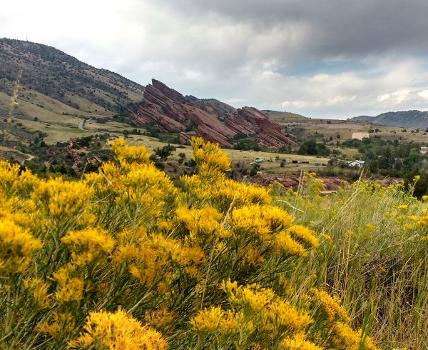 Red Rocks Park with Yellow Rabbitbrush - Free High Resolution Photo