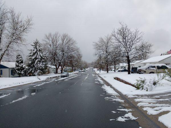Spring Snow - Free High Resolution Photo