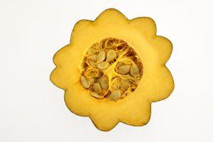 Acorn Squash Half with Seeds - Free High Resolution Photo
